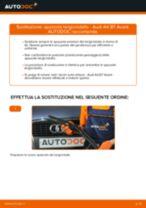 Come cambiare spazzole tergicristallo della parte anteriore su Audi A4 B7 Avant - Guida alla sostituzione