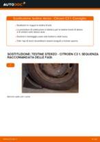 Come cambiare testine sterzo su Citroen C3 1 - Guida alla sostituzione