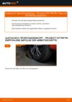 Spurstangenkopf auswechseln PEUGEOT 107: Werkstatthandbuch