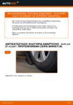 Οι συστάσεις του μηχανικού αυτοκινήτου για την αντικατάσταση AUDI Audi A4 b6 2.0 Ανάρτηση