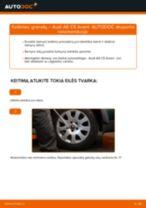 Kaip pakeisti Audi A6 C5 Avant granatų - keitimo instrukcija