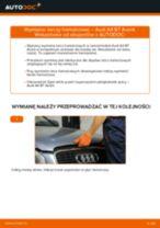 Jak wymienić tarcze hamulcowe tył w Audi A4 B7 Avant - poradnik naprawy