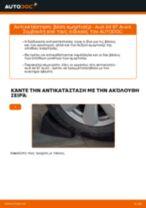 Πώς να αλλάξετε βάση αμορτισέρ πίσω σε Audi A4 B7 Avant - Οδηγίες αντικατάστασης