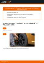 Manuell PDF för 207 underhåll