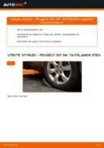 Bilmekanikers rekommendationer om att byta PEUGEOT Peugeot 307 SW 1.6 16V Multirem