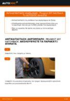 Αντικατάσταση Λαβή πόρτας Skoda Octavia 1u5: οδηγίες pdf
