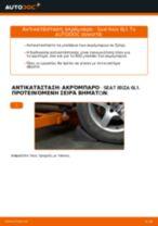 Εγχειριδιο SEAT pdf