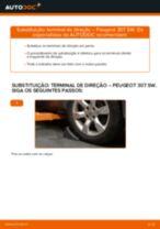 Como mudar terminal de direção em Peugeot 307 SW - guia de substituição