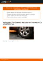 Schimbare Cap de bara: pdf instrucțiuni pentru PEUGEOT 307