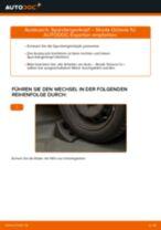 BMW E60 Lagerung Radlagergehäuse: Online-Handbuch zum Selbstwechsel