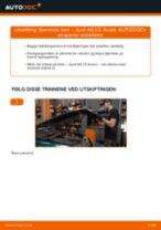 Hvordan bytte og justere Baklyspære AUDI A6: pdf håndbøker