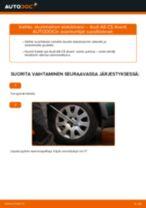 Automekaanikon suositukset AUDI Audi A4 b6 2.0 -auton Koiranluu-osien vaihdosta