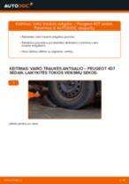 PEUGEOT 407 Rato stebulė keitimas: nemokamas pdf
