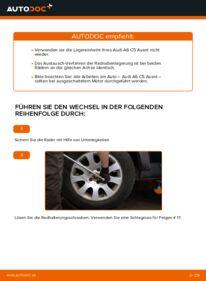 Wie der Wechsel durchführt wird: Radlager 2.5 TDI quattro Audi A6 C5 Avant tauschen