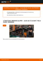 Hvordan bytte Nummerskiltlys Ford Mondeo b5y - guide online
