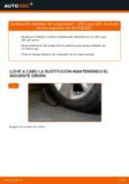 VW LUPO manual de solución de problemas