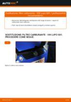 Le raccomandazioni dei meccanici delle auto sulla sostituzione di Cuscinetto Ruota VW VW Lupo 6x1 1.0