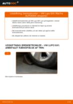 Vedligeholdelse af Bremsesystem: gratis manual