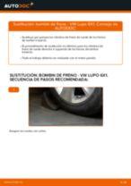 Instrucciones gratuitas en línea sobre cómo renovar Cilindro de freno VW LUPO (6X1, 6E1)