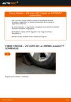Cseréljünk Fékdob VW LUPO: felhasználói kézikönyv