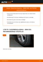 Byta fjäderbenslagring bak på BMW E60 – utbytesguide