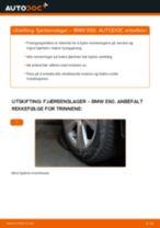 Hvordan bytte Valselager bak og foran BMW 5 (E60) - guide online