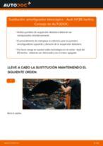 Cómo cambiar: amortiguador telescópico de la parte delantera - Audi A4 B5 berlina | Guía de sustitución