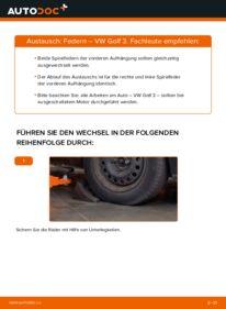 Wie der Wechsel ausgeführt wird: Federn beim VW GOLF
