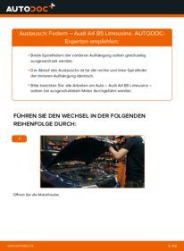 Wie der Wechsel durchführt wird: Federn 1.6 Audi A4 B5 tauschen