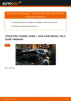 Hvordan bytte og justere Tennplugg AUDI A4: pdf håndbøker