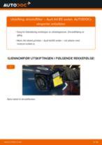 Skifte Drivstoffilter AUDI A4: verkstedhåndbok