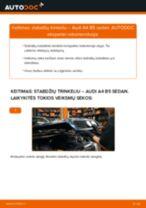 FORD S-MAX Priedų komplektas, diskinių stabdžių trinkelės pakeisti: žinynai pdf