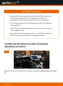 Wie der Wechsel durchführt wird: Bremsscheiben 1.6 Audi A4 B5 tauschen