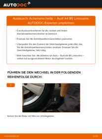 Wie der Wechsel durchführt wird: Achsmanschette 1.6 Audi A4 B5 tauschen