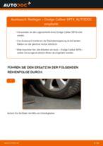 Lagerung Radlagergehäuse wechseln DODGE CALIBER: Werkstatthandbuch