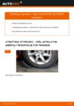 Hvordan bytte Bremseklave bak og foran BMW i3 - guide online