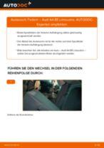 Wie Audi A4 B5 Limousine Federn hinten wechseln - Schritt für Schritt Anleitung