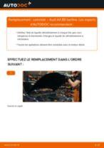 Notre guide PDF gratuit vous aidera à résoudre vos problèmes de AUDI Audi A4 B7 1.9 TDI Bougies d'Allumage