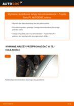 Instrukcja naprawy krok po kroku NISSAN TERRANO Van (R20)