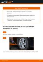 Kfz Reparaturanleitung für Peugeot Expert 224