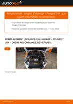 Manuel d'utilisation PEUGEOT 308 pdf