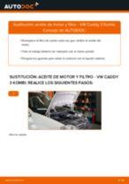 Recomendaciones de mecánicos de automóviles para reemplazar Filtro de Habitáculo en un VW VW Caddy 3 1.6 TDI