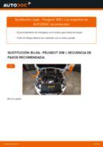 Cómo cambiar: bujía - Peugeot 308 I | Guía de sustitución