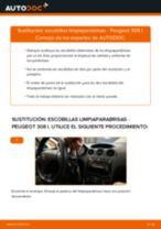 Cómo cambiar: escobillas limpiaparabrisas de la parte delantera - Peugeot 308 I | Guía de sustitución