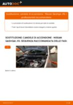 Le raccomandazioni dei meccanici delle auto sulla sostituzione di Tergicristalli NISSAN Nissan Qashqai j10 2.0 dCi Allrad