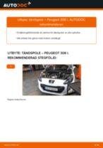 Manuell PDF för 308 underhåll