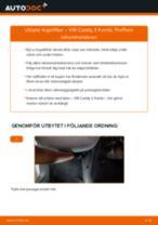 Byta Kupeluftfilter i VW CADDY III Estate (2KB, 2KJ, 2CB, 2CJ) – tips och tricks