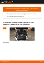 Mekanikerens anbefalinger om bytte av PEUGEOT PEUGEOT 207 (WA_, WC_) 1.6 HDi Tennplugger