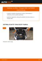 Automechanikų rekomendacijos PEUGEOT PEUGEOT 207 (WA_, WC_) 1.6 HDi Alyvos filtras keitimui