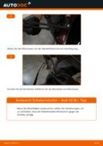 Scheibenwischer hinten selber wechseln: Audi A3 8L1 - Austauschanleitung